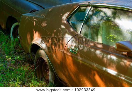 Rusty Old Cars In Abandoned Place, Junkyard