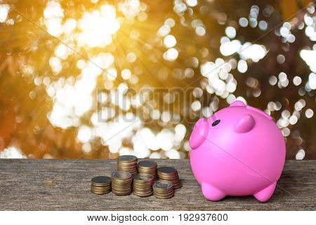 Hand women putting golden coins in money piggy bank on wood and bokeh tree background. Concept of real estate investments.
