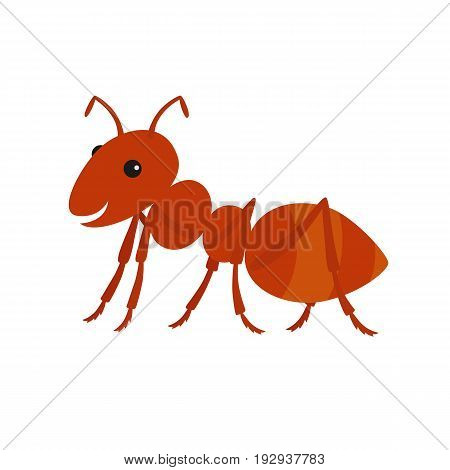 Cute ant cartoon.Vector illustration isolated on white background