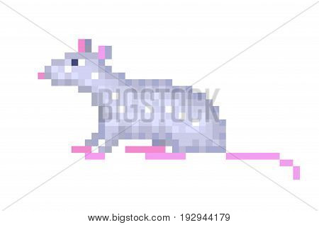 Old school 8 bit pixel art gray rat sitting on the ground isolated on white background. Retro video/pc game animal character. Slot machine graphics. Laboratory mouse icon. Pet domestic rodent symbol.