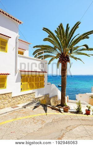 The villa is near beach Mallorca Spain