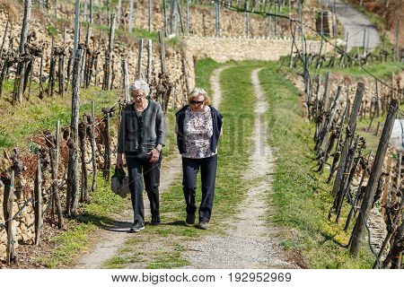 WEISSENKIRCHEN/ AUSTRIA - APRIL 2, 2017. Two elderly women walking in the vineyards near the village of Weissenkirchen. Wachau valley, Lower Austria.