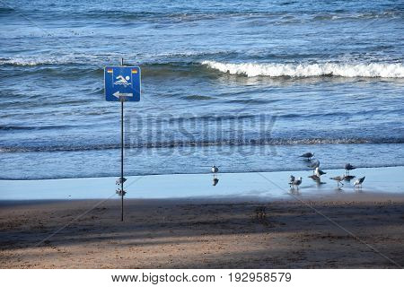 A sign reads swimming only on the left side.