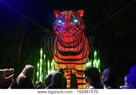 Sydney Australia - Jun 16 2017. Sumatran Tiger. Giant multimedia light sculptures in the stunning grounds of Taronga Zoo during Vivid Sydney Lights Festival.