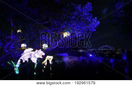 Sydney Australia - Jun 16 2017. Tasmanian Devil. Giant multimedia light sculptures in the stunning grounds of Taronga Zoo during Vivid Sydney Lights Festival. Harbour Bridge in the background.