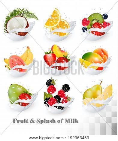Big collection icons of fruit in a milk splash. Guava coconut mango peach strawberry cherry blueberry banana melon orange raspberry. Vector Set