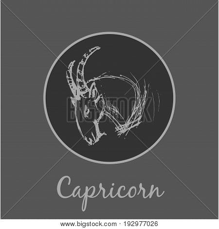 Capricorn Astrological zodiac symbol. Horoscope sign background. Sketch style. Vector Illustration.