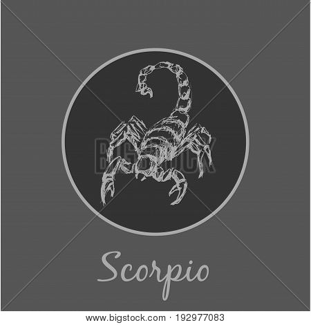 Scorpio Astrological zodiac symbol. Horoscope sign background. Sketch style. Vector Illustration.