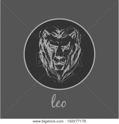 Leo Astrological zodiac symbol. Horoscope sign background. Sketch style. Vector Illustration.