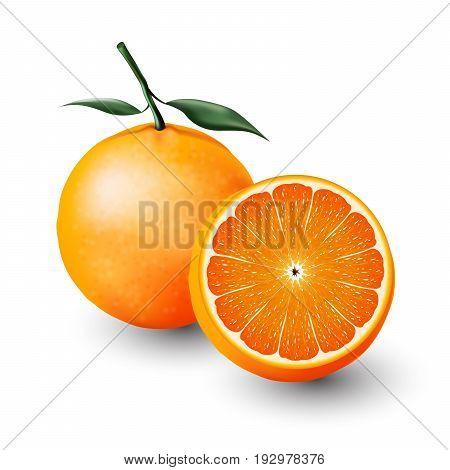 Orange and a half of orange, fruit, Vector