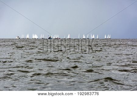 sailing boats at sea against the sky the Gulf of Finland