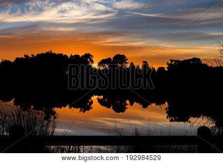 Cordyline Waters Lake with a wonderful reflection sunset.