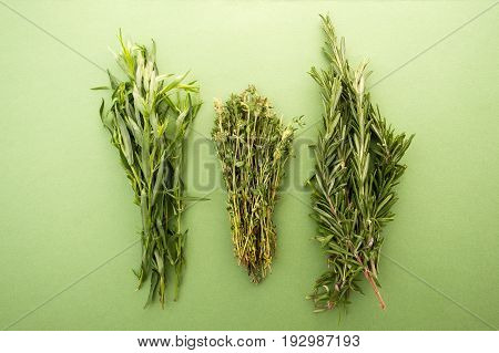 Tarragon, Thyme And Rosemary On A Green Pastel Background..