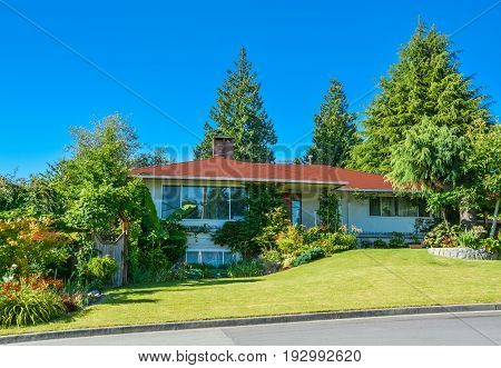 Family house buried in verdure. Residential house with green lawn over big front yard and decorative trees around