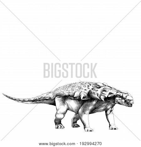 dinosaur in full growth stegosaurus Armadillo with spikes on the back sketch vector graphics black and white drawing
