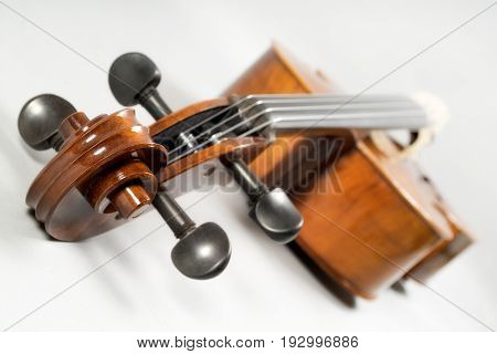 cello still life isolated on a white background