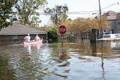 this photo shows downed power lines in a flooded area of new orleans in the aftermath of hurricane katrina. the flood water in this metairie neighborhood was just over five feet. poster