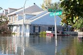 this photo shows the flooding incurred in new orleans in the aftermath of hurricane katrina. the flood water in this metairie neighborhood was just over five feet. poster