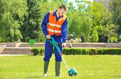 Young worker mowing lawn with grass trimmer outdoors on sunny day poster