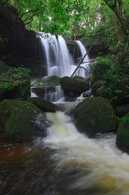 Deep forest waterfall at Phu Hin Rong Kla National Park in Thailand