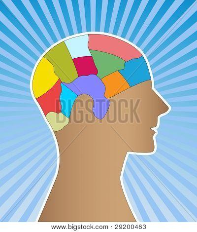 male profile brain