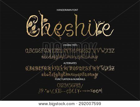 Decorative Script Font. Alphabet Calligraphy Signs. Letter Vector Set. Hand Drawn Typography Typeset