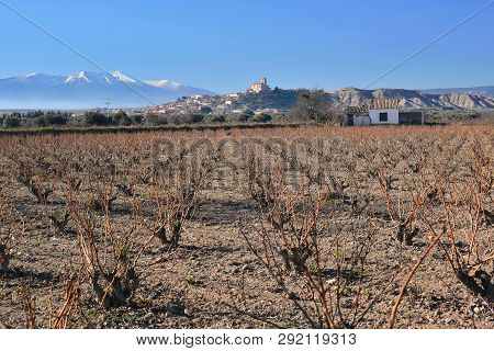 Vineyards And Moncayo Montain Campo De Borja Zaragoza