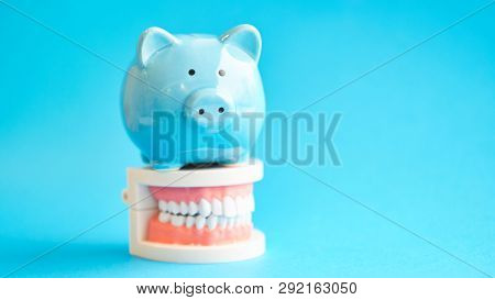 Piggy Bank With White Teeth Model On Blue Background. Tax Offset Concept. Medical Expense Deductions