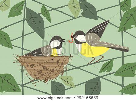 Cute Chickadee Birds Couple In Nest. Hand Drawn Flat Minimal Design. Male Bird Is Feeding By Worm Fe