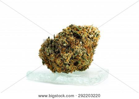 Isolated Trimmed Cannabis Bud