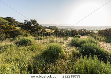 San Fernando Valley spring mountain meadow sunrise at Santa Susana Pass State Historic Park in Los Angeles, California.