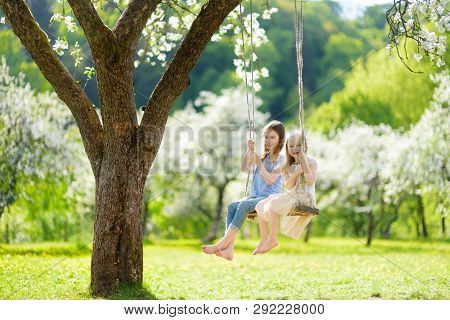 Two Cute Sisters Having Fun On A Swing In Blossoming Old Apple Tree Garden Outdoors On Sunny Spring