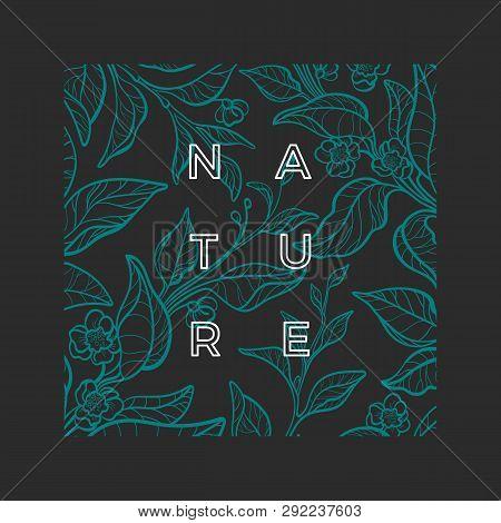 Vector Nature Template. Botanical Green Tea Bush. Realistic Graphic Leaves, Flower. Art Sketch Desig