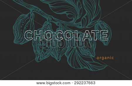 Vector Graphic Template. Cacao Tree, Branch, Leaves, Bean. Vintage Exotic Banner. Tropic Card, Art S