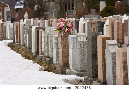 Flowers In A Cemetery In Winter