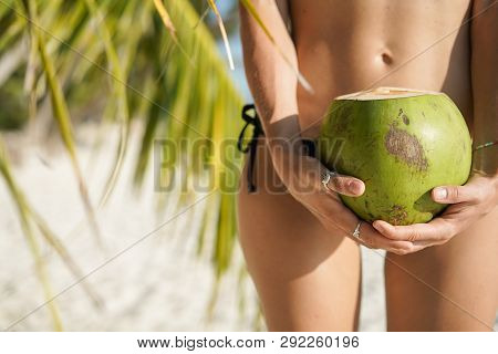 Close Up Of Hands Of Sexy Skinny Woman In Black Bikini Swimwear Holding Coconut. Hips, Tropical Beac