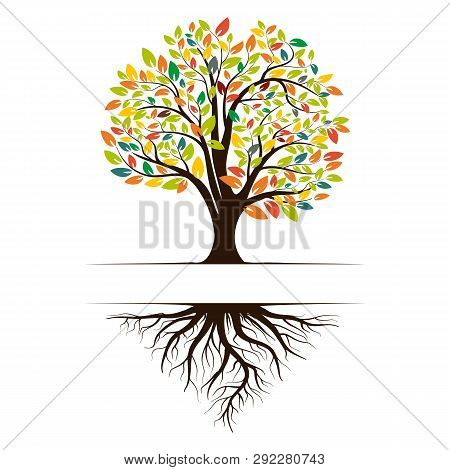 Logo Of A Green Life Tree With Roots And Leaves. Vector Illustration Icon Isolated On White Backgrou