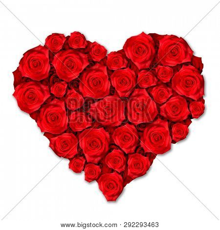 Red Roses Heart Shape Isolated on White Background. Love Concept.
