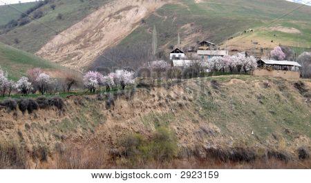 Berg-Siedlung