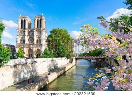Notre Dame Cathedral Over The Seine River At Sunny Spring Day, Paris, France