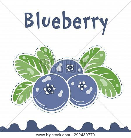 Blueberry Vector Illustration, Berries Images. Doodle Blueberry Vector Illustration In Violet Blue A