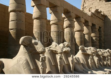 A row of carved animal spirits guard the entrance to an Egyptian temple at Luxor