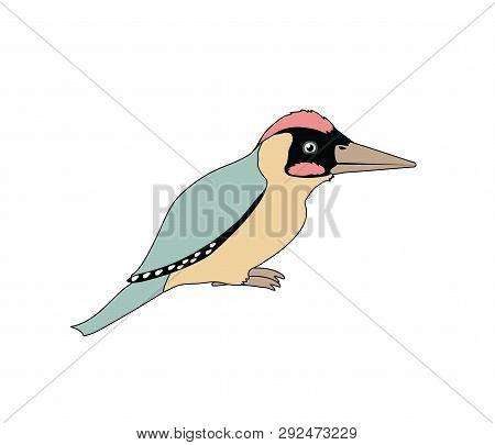 Vector Scandi Cartoon Animal Clip Art Green Woodpecker