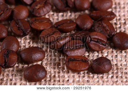 Roasted coffee beans on linen sackcloth