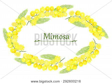 Mimose Flowers, Yellow Bouquet Of Flowers.colorful Flowers, Flower Frame
