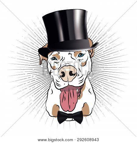 Elegant Dandy Dog. Fun Graphic. Vector Drawing.