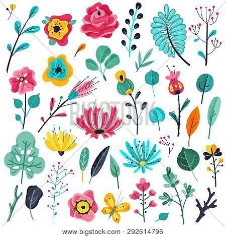 Summer Flowers Flat. Floral Garden Flower Flowering Plant Nature Florals Beauty Spring Anniversary A