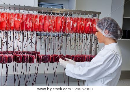 One woman studied in the laboratory, the blood donated blood. Health and Welfare.