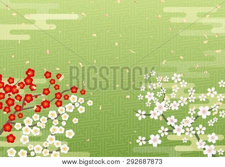 Cherry Blossom Sakura Tree On Japanese Matcha Background