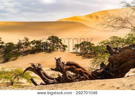 Natural Landscape Of Peruvian Desert On The Way To Nazca In Peru